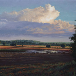 James Borger Landscapes Acrylic Brandon Jacobs Gallery Kansas City Missouri